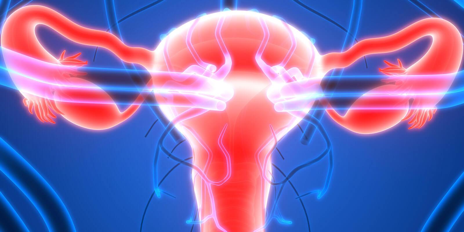 Gebärmutterhalskrebs (Zervixkarzinom) und Sexualität